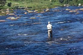 pêche dans rapide